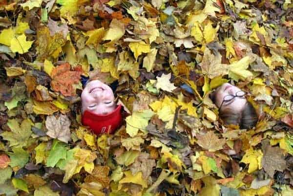 Kids Photography Tips: Tip #1: Find the right angle | Kids in Leaves by Dan Zen