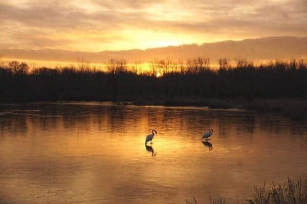 Saturday Sunrise by Rachel Kramer