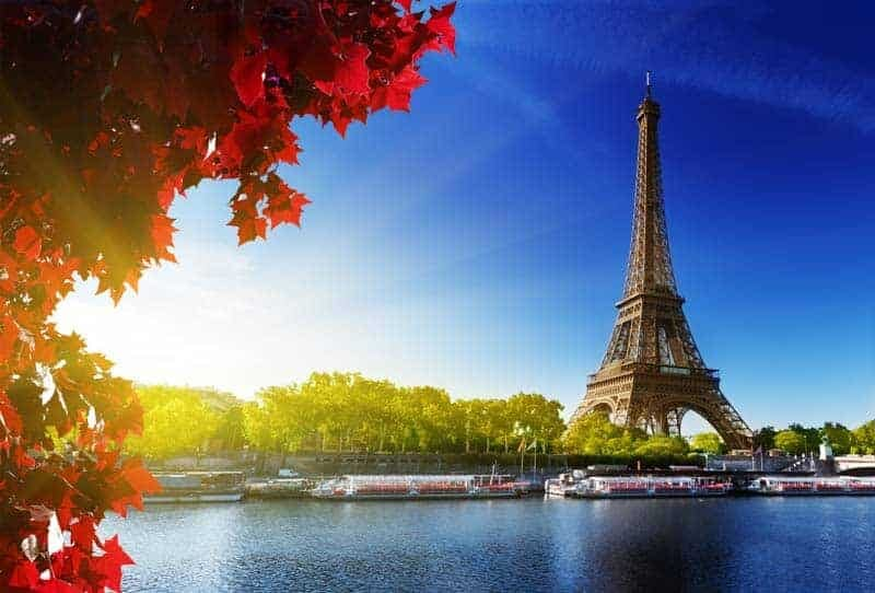 Eiffel Tower with Sun and Tree