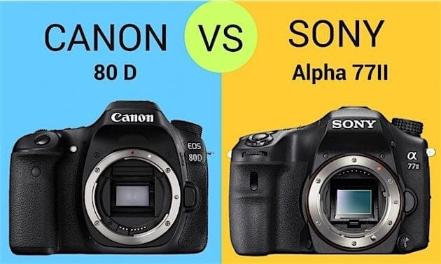 Comparison 80D Vs. Sony A77 2
