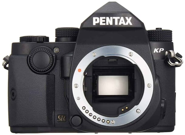 Pentax KP DSLR - One of the Best Cameras for Safari