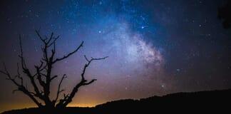 Best Cameras for Astrology