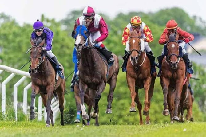Stock Photo by Stefan Holm (Horses Racing)