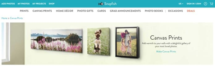 Snapfish.com Canvas Prints