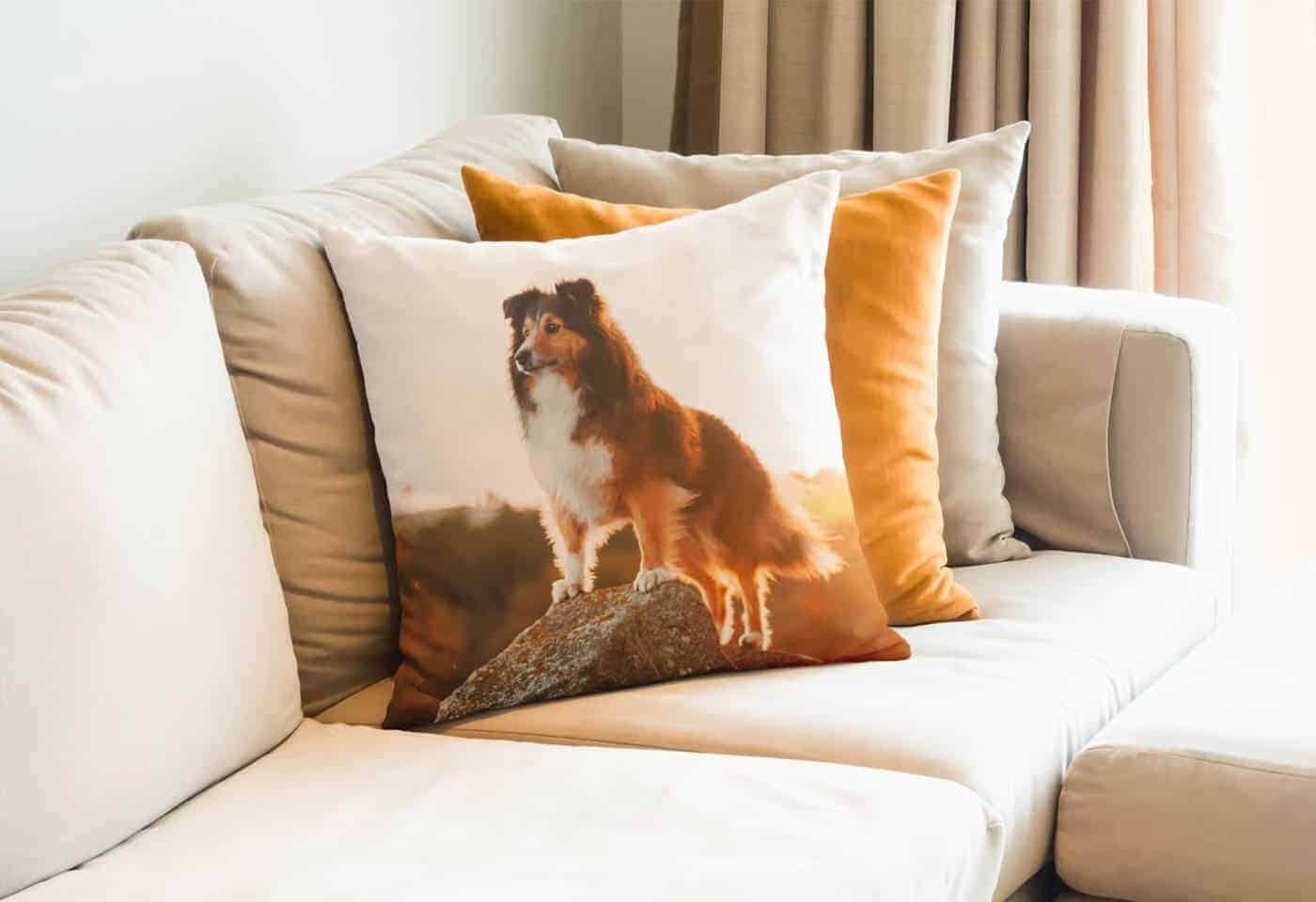 CanvasPop throw pillows sample