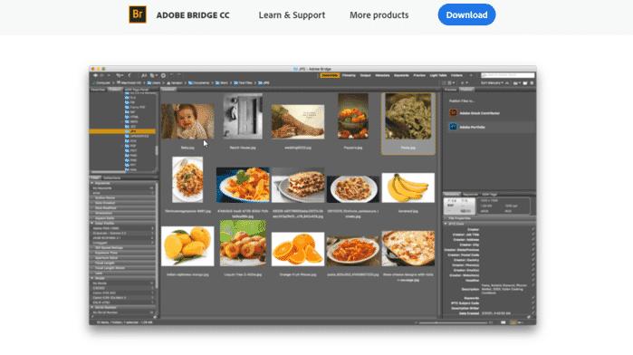 Adobe Bridge photo organization