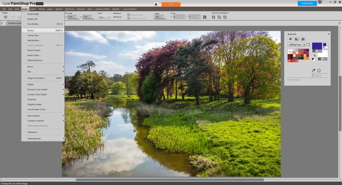 Paintshop Pro  Review Image Editing