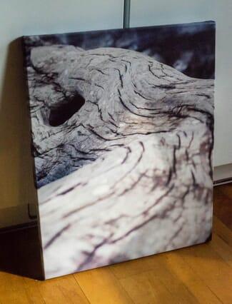 canvas photo printers