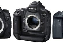 Canon EOS 80D vs 7D Mark II: Best Video DSLR vs Outdoor DSLR