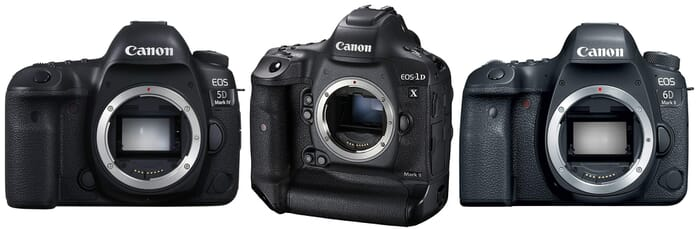 best three dslrs