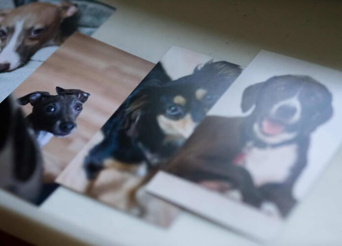 Shutterfly photo prints sample images