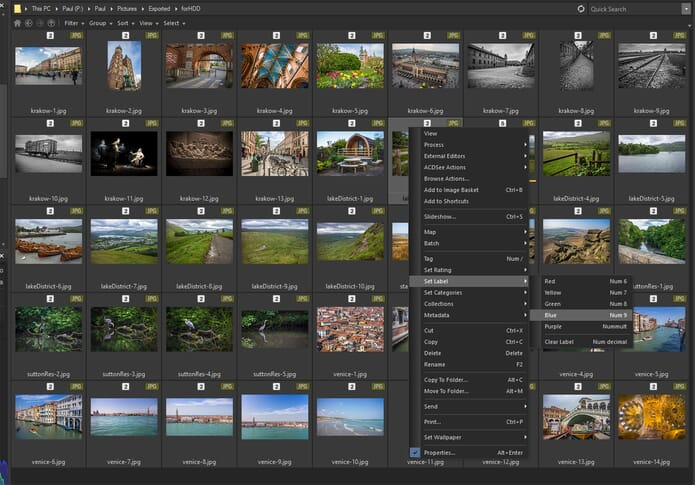 ACDSee Photo Studio Ultimate 2019 Review - Photo options