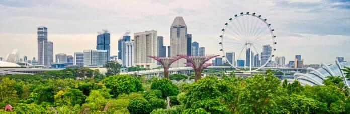 Luminar Flex Review - Singapore edited