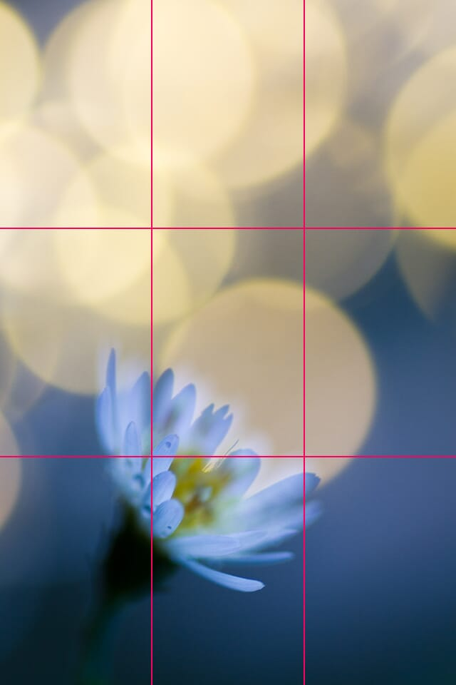 learn photography rule of thirds example