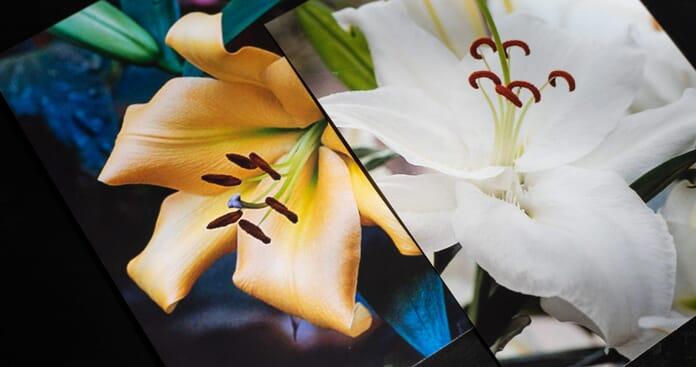 Snapfish 4x6 prints