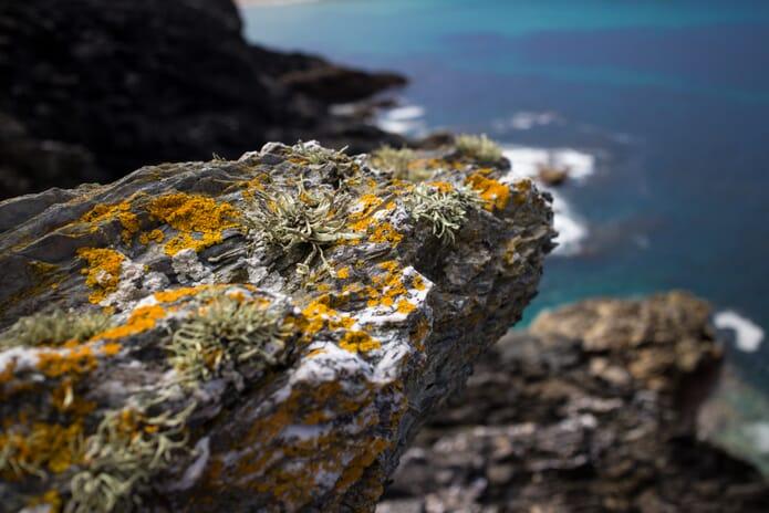Rocks at Porth Joke Beach