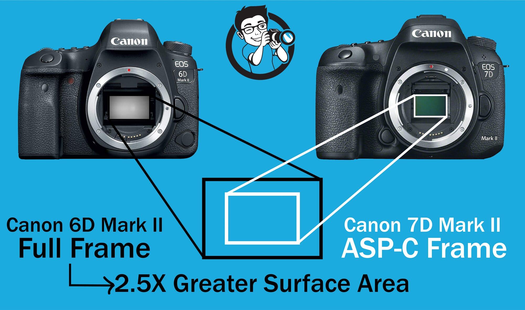 Sensor Canon 6D vs 7D