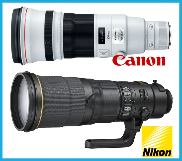 500mm wildlife lenses