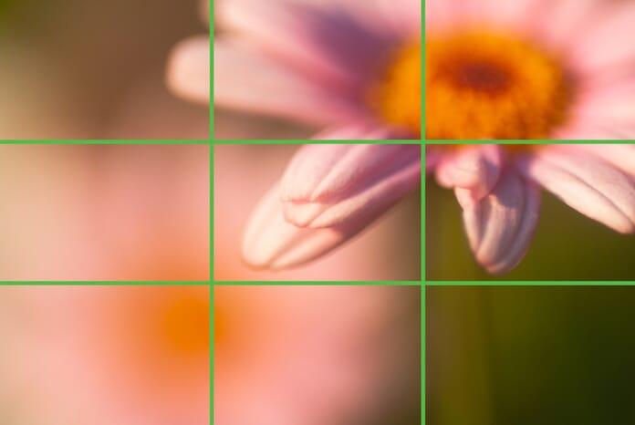 Using rule of thirds grid.