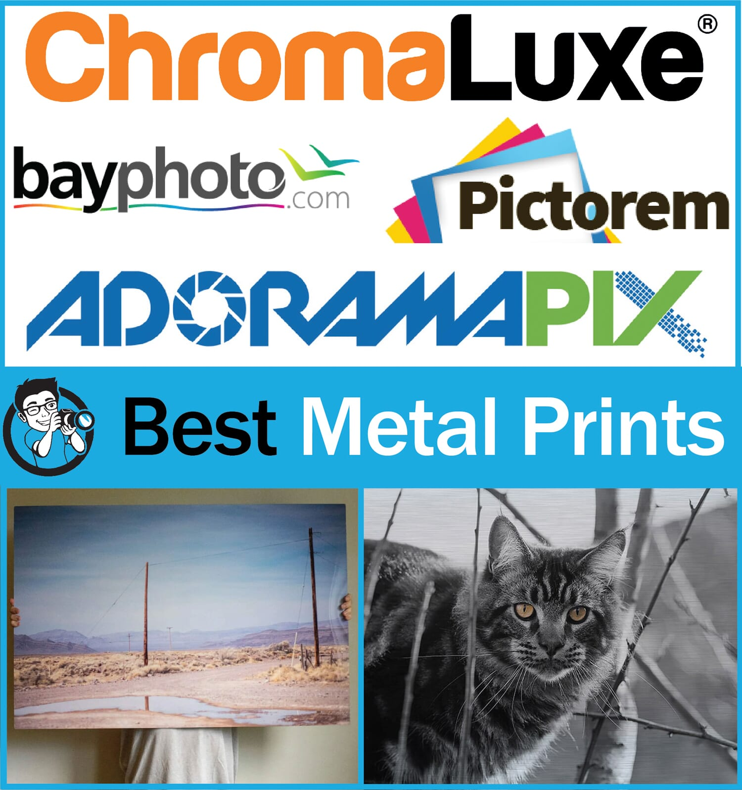 best metal prints