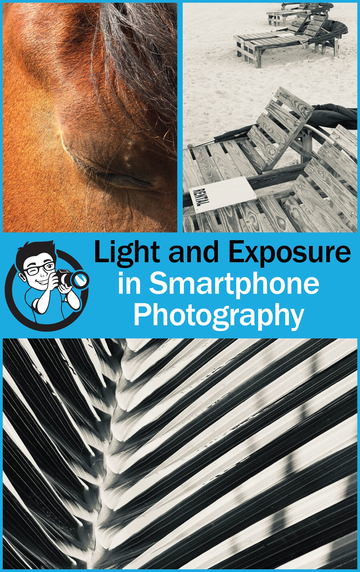 light and exposure smartphone photography