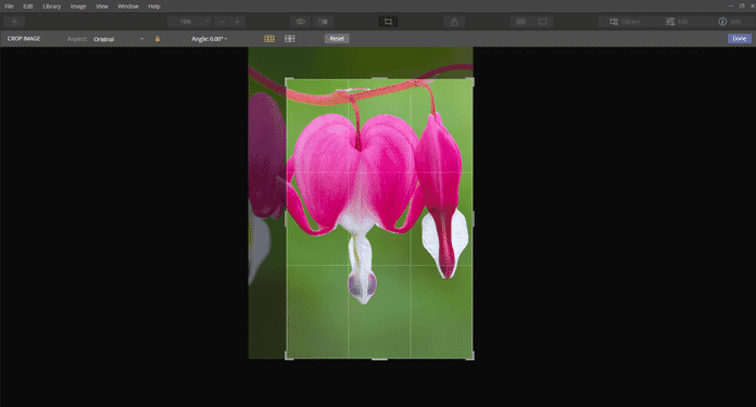 cropping luminar shortcut