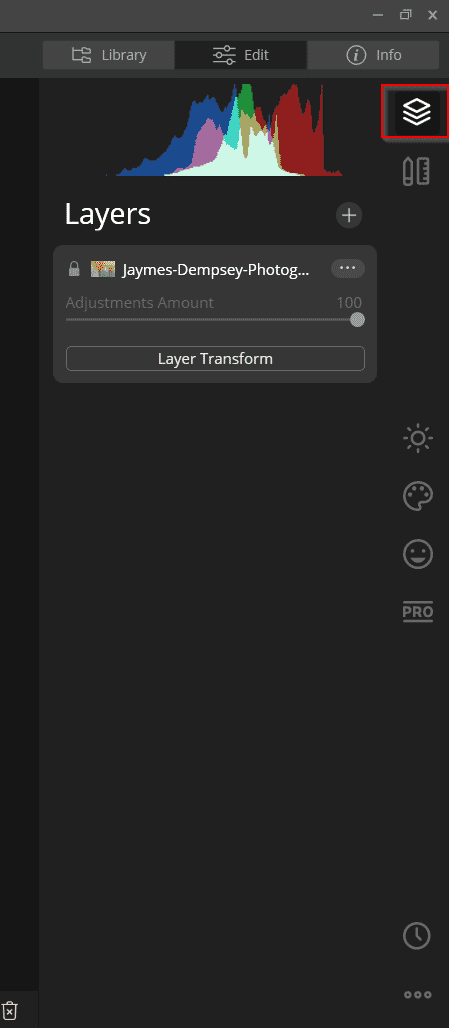 layer button