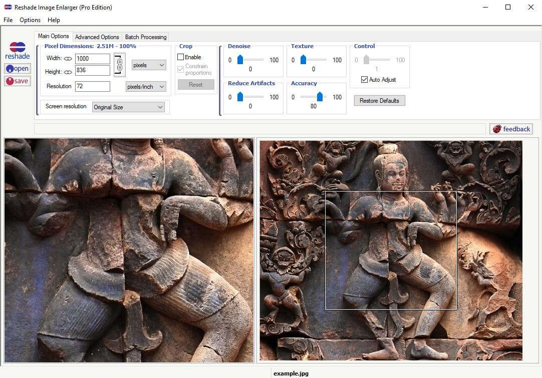 Reshade Image Enlarger Software
